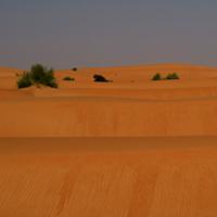 Vulnerability Assessment – Mauritania