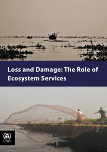 UNEP_Report_Ecosystem